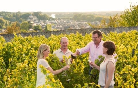 Could wine tourism save the French wine industry?